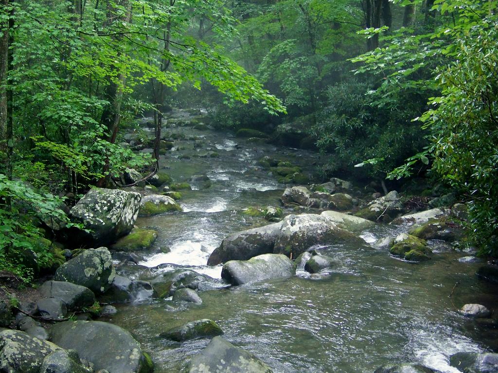 Gatlinburg Things To Do - Smoky Mountains